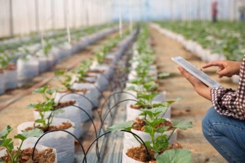 Soluções para Agricultura de Precisão: Controle e monitoramento eletrônico de lavouras e plantios.