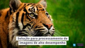 Read more about the article Módulos embarcados de alto desempenho